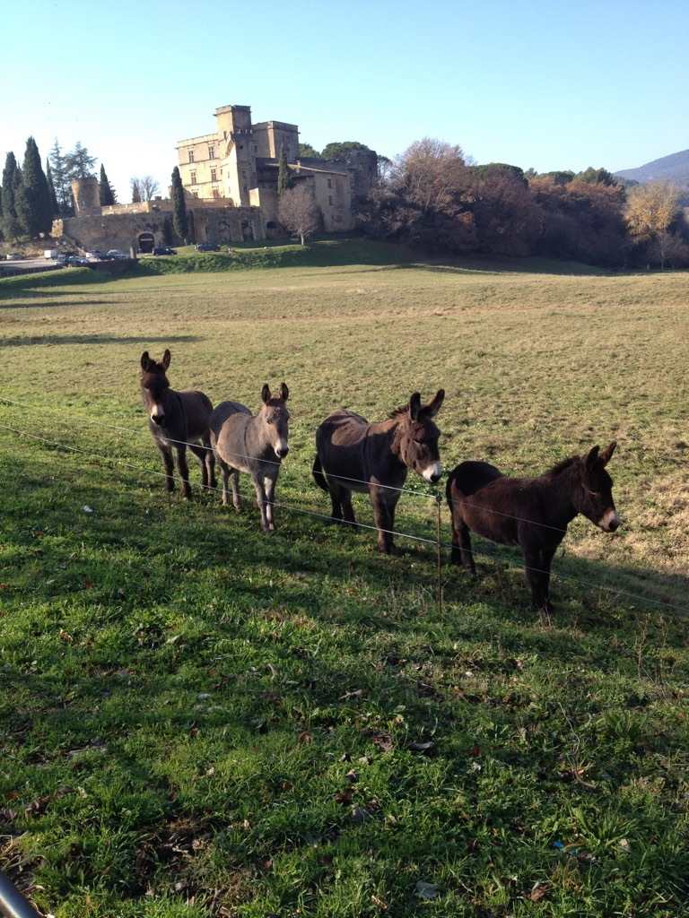 Christmas in Lourmarin.jpg